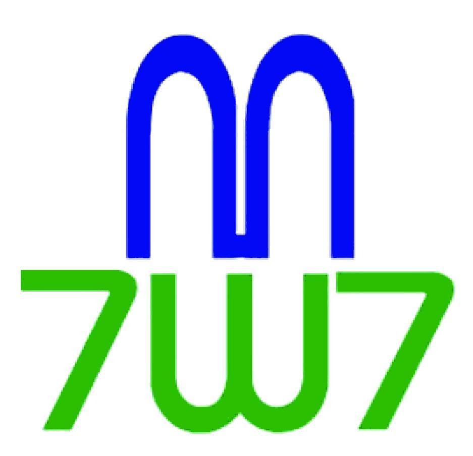 Mark 737 Logo